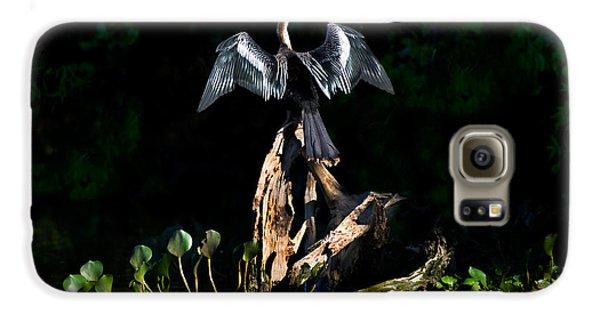 Anhinga Anhinga Anhinga, Pantanal Galaxy S6 Case by Panoramic Images