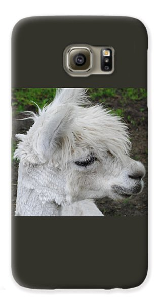 Baby Llama Galaxy S6 Case by Ellen Henneke