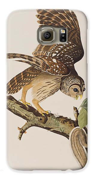 Barred Owl Galaxy S6 Case