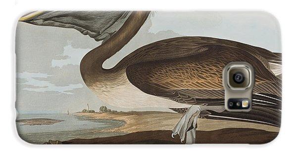 Brown Pelican Galaxy S6 Case by John James Audubon
