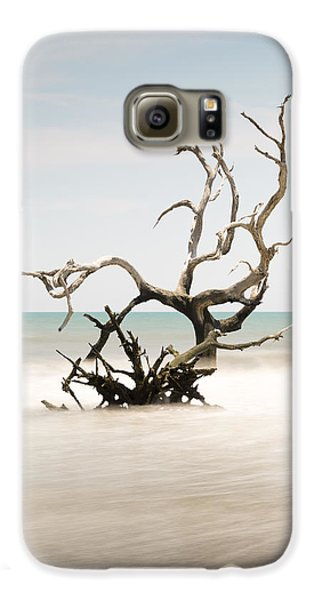 Bull Galaxy S6 Case - Bulls Island C-vi by Ivo Kerssemakers