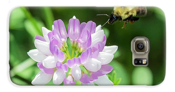 Bumble Bee Pollinating A Flower Galaxy S6 Case by Ricky L Jones