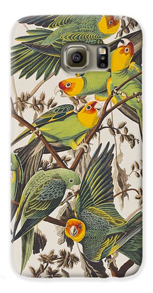 Carolina Parrot Galaxy S6 Case by John James Audubon