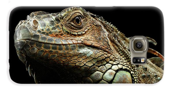 Closeup Green Iguana Isolated On Black Background Galaxy S6 Case by Sergey Taran