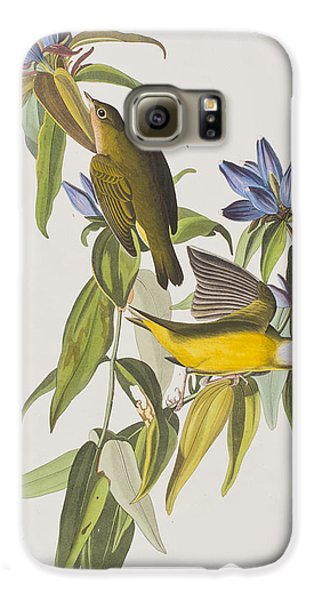 Connecticut Warbler Galaxy S6 Case by John James Audubon