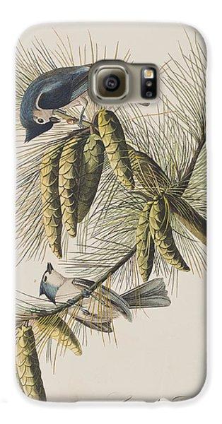 Titmouse Galaxy S6 Case - Crested Titmouse by John James Audubon