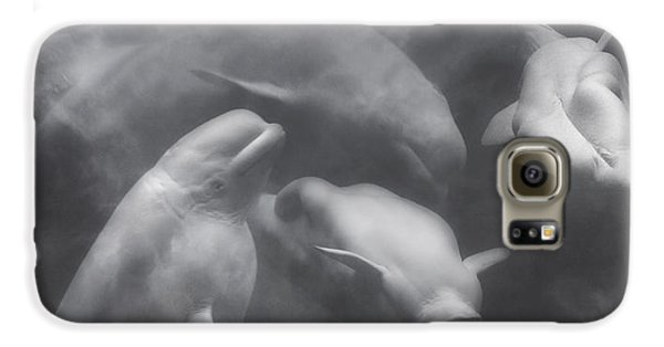Dancing Belugas  Galaxy S6 Case by Betsy Knapp