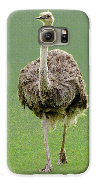 Emu Galaxy S6 Case by Ellen Henneke
