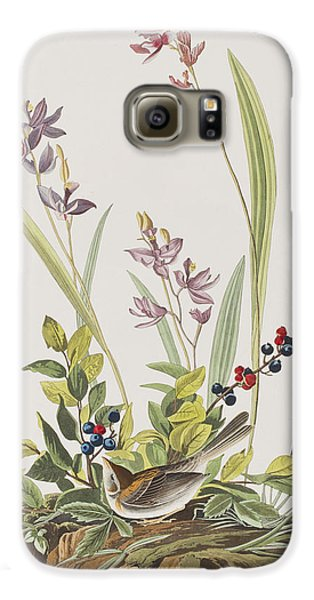 Field Sparrow Galaxy S6 Case by John James Audubon
