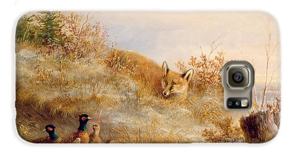 Fox And Pheasants In Winter Galaxy S6 Case by Anonymous