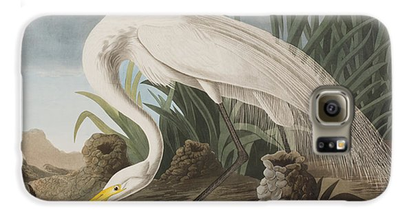 Great Egret Galaxy S6 Case by John James Audubon