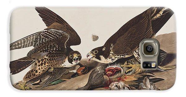 Great-footed Hawk Galaxy S6 Case by John James Audubon