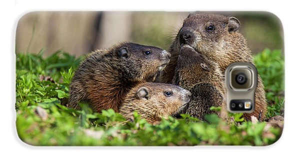 Happy Family Galaxy S6 Case by Mircea Costina Photography