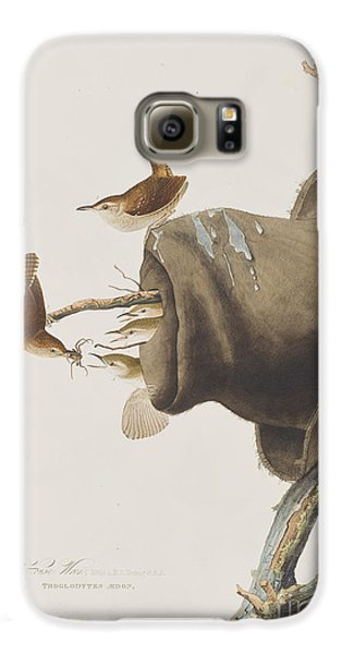 House Wren Galaxy S6 Case by John James Audubon