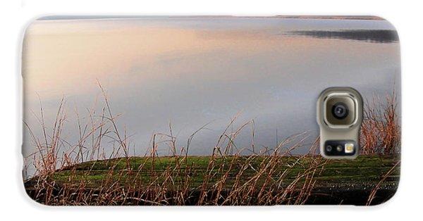 Hudson River Vista Galaxy S6 Case