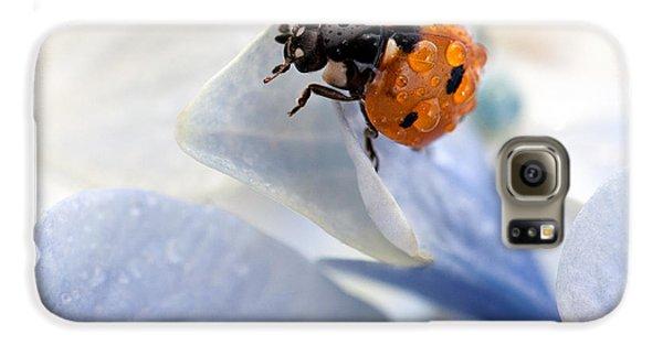Ladybug Galaxy S6 Case by Nailia Schwarz