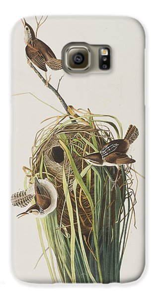 Marsh Wren  Galaxy S6 Case by John James Audubon