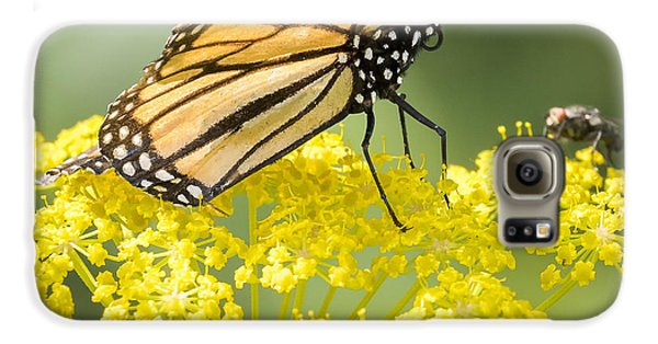 Monarch Butterfly Galaxy S6 Case