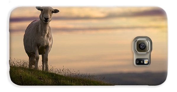 Sheep Galaxy S6 Case - On The Top Of The World by Angel Ciesniarska