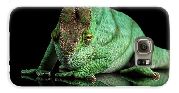 Parson Chameleon, Calumma Parsoni Orange Eye On Black Galaxy S6 Case by Sergey Taran