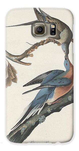 Passenger Pigeon Galaxy S6 Case by Rob Dreyer