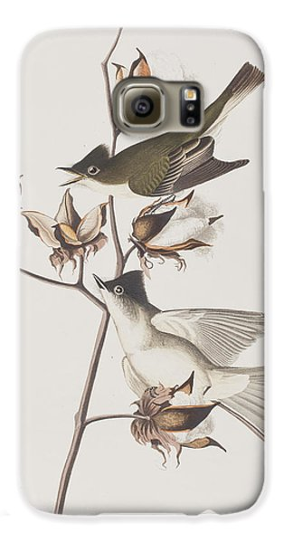 Pewit Flycatcher Galaxy S6 Case