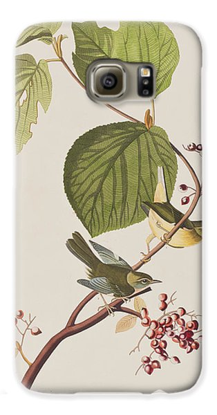 Pine Swamp Warbler Galaxy S6 Case by John James Audubon