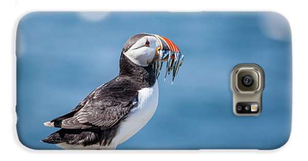 Puffin Galaxy S6 Case - Puffin With Fish For Tea by Anita Nicholson