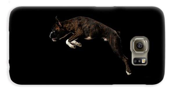 Dog Galaxy S6 Case - Purebred Boxer Dog Isolated On Black Background by Sergey Taran