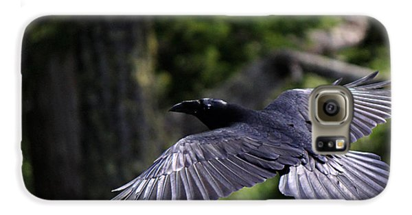 Raven Flight Galaxy S6 Case