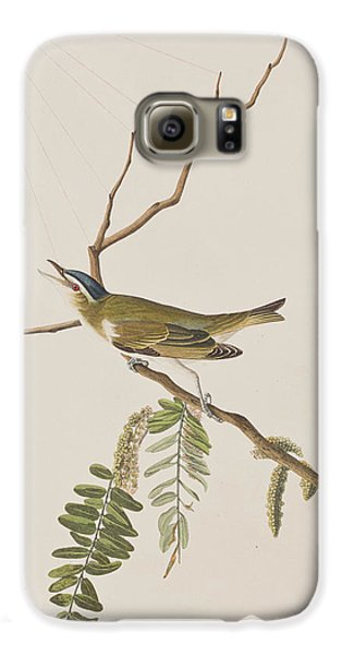 Red Eyed Vireo Galaxy S6 Case by John James Audubon