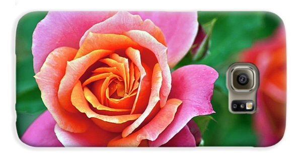 Galaxy S6 Case featuring the photograph Rose by Bill Barber