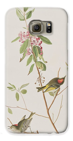 Ruby Crowned Wren Galaxy S6 Case by John James Audubon