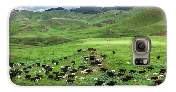 Salt And Pepper Pasture Galaxy S6 Case by Todd Klassy