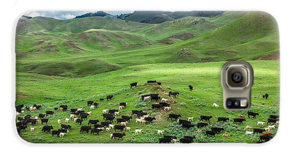 Cow Galaxy S6 Case - Salt And Pepper by Todd Klassy