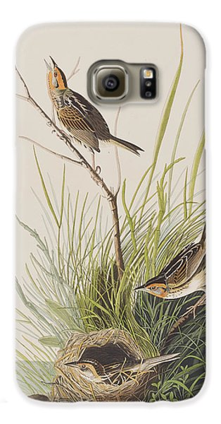 Sharp Tailed Finch Galaxy S6 Case by John James Audubon