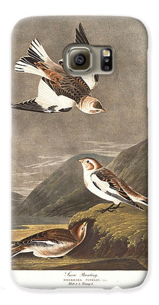 Snow Bunting Galaxy S6 Case by Dreyer Wildlife Print Collections