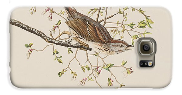 Song Sparrow Galaxy S6 Case by John James Audubon