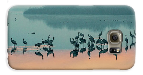 Sunrise Over The Hula Valley Galaxy S6 Case
