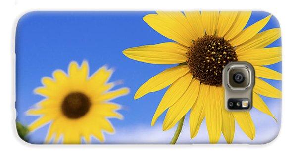 Sunflower Galaxy S6 Case - Sunshine by Chad Dutson