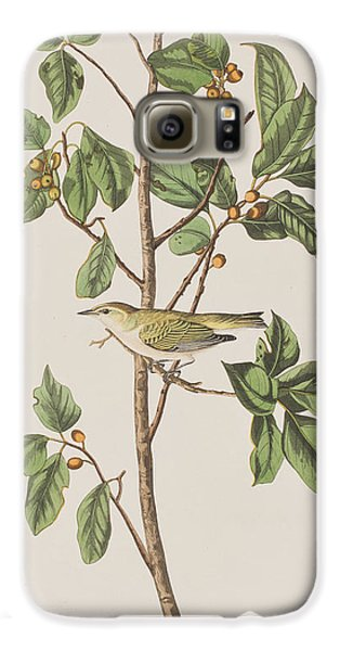 Tennessee Warbler Galaxy S6 Case by John James Audubon