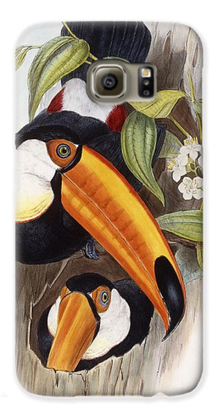 Toucan Galaxy S6 Case by John Gould