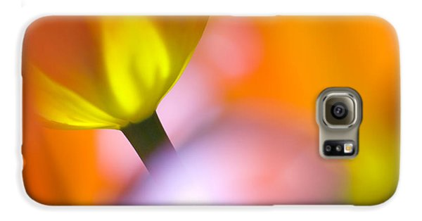 Tulip Galaxy S6 Case - Tulips by Silke Magino