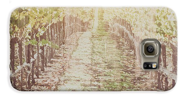 Vineyard In Autumn With Vintage Film Style Filter Galaxy S6 Case