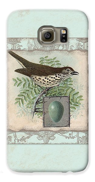Welcome To Our Nest - Vintage Bird W Egg Galaxy S6 Case by Audrey Jeanne Roberts