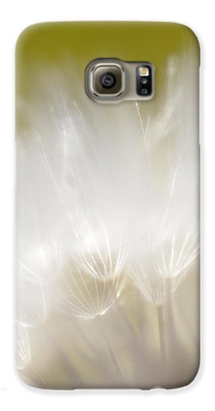 White Blossom 1 Galaxy S6 Case by Dubi Roman