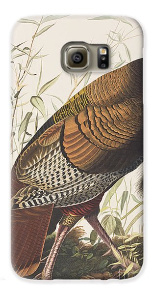 Wild Turkey Galaxy S6 Case by John James Audubon