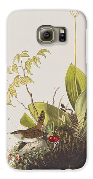 Wood Wren Galaxy S6 Case by John James Audubon