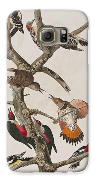 Woodpeckers Galaxy S6 Case by John James Audubon