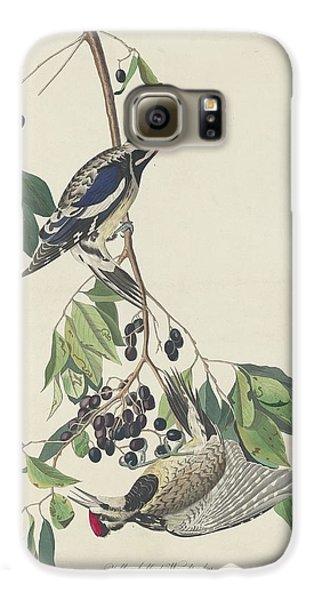 Yellow-bellied Woodpecker Galaxy S6 Case by John James Audubon